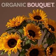 organic bouquet image fall